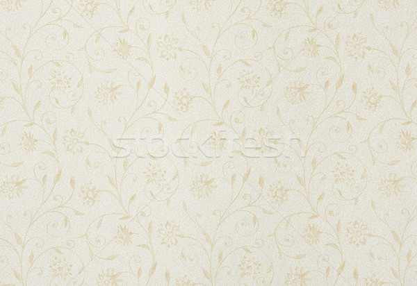 Abstract backgroung with leafs and flowers Stock photo © shamtor