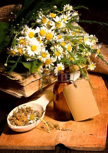 カモミール 静物 花束 ボトル 花 ストックフォト © sharpner