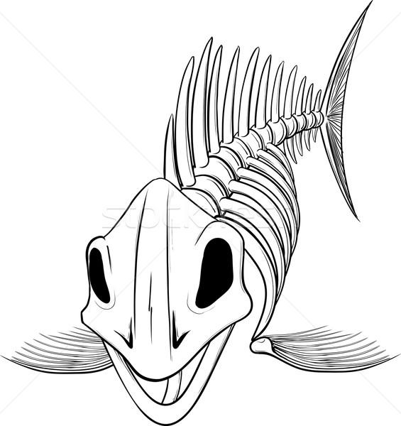 シルエット スケルトン 魚 詳しい 頭 孤立した ストックフォト © sharpner