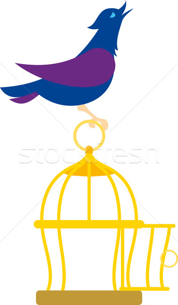 bird on the cage Stock photo © sharpner