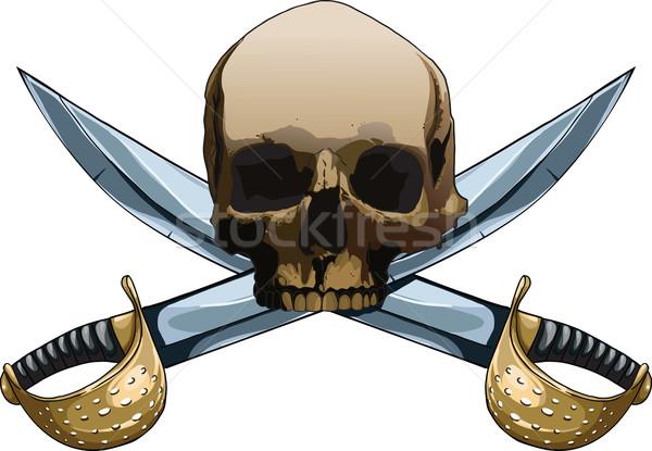 веселый Мечи пиратских символ два крест Сток-фото © sharpner