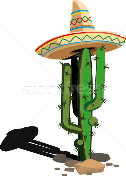 Stockfoto: Cactus · Mexicaanse · hoed · geïsoleerd · witte · schaduw