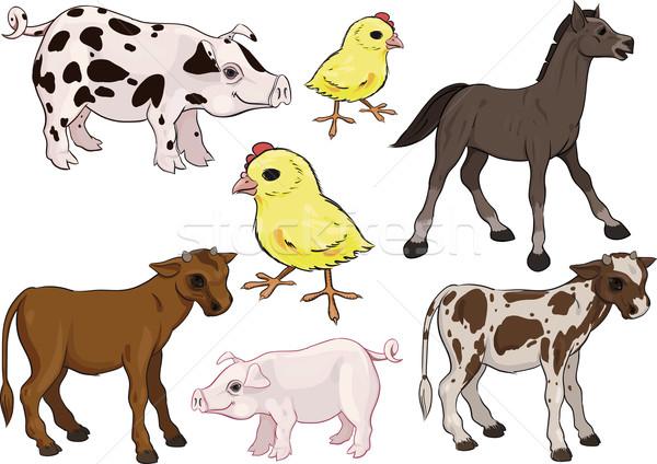 Baby farm animals set Stock photo © sharpner