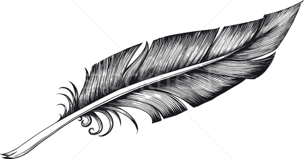 quill pen Stock photo © sharpner