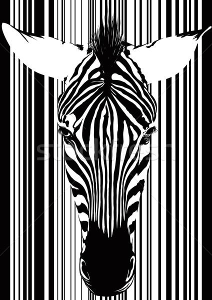 Zebra código de barras cara isolado Foto stock © sharpner