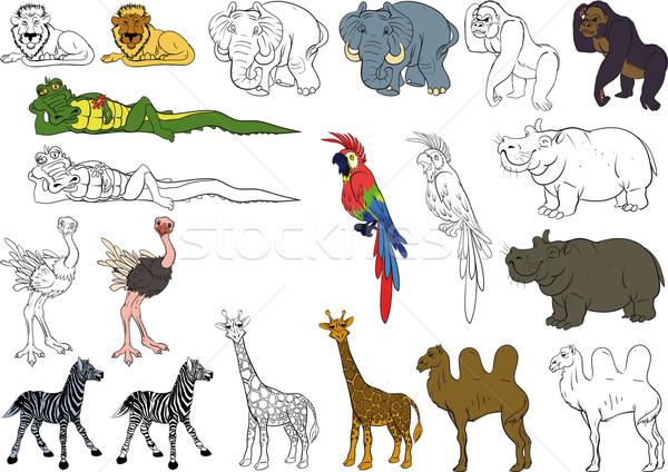 セット アフリカ 動物 面白い 動物 コレクション ストックフォト © sharpner