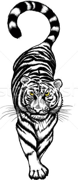 black and white Crouching Tiger Stock photo © sharpner