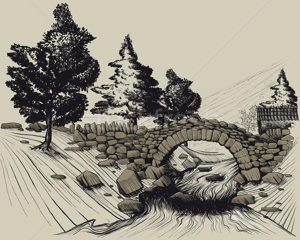 古い 石 橋 森 川 実例 ストックフォト © sharpner
