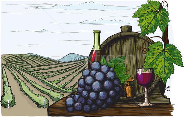 Foto stock: Vinificação · paisagem · vinho · uvas · como · método