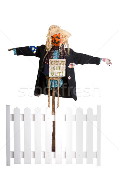 Funny scarecrow Stock photo © sharpner