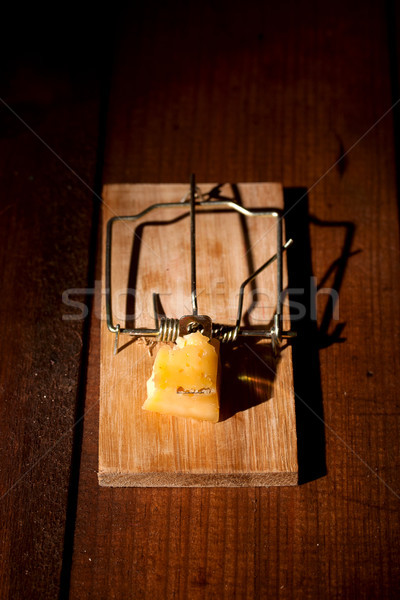 charged mousetrap cheese Stock photo © sharpner
