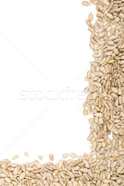 Tournesol semences bord frontière naturelles blanche Photo stock © ShawnHempel