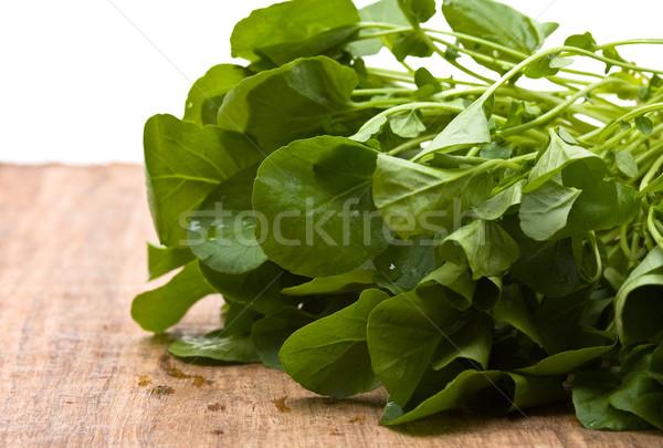 świeże organiczny tle zielone roślin biały Zdjęcia stock © ShawnHempel
