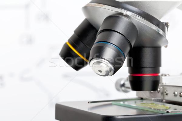 Science education Stock photo © ShawnHempel