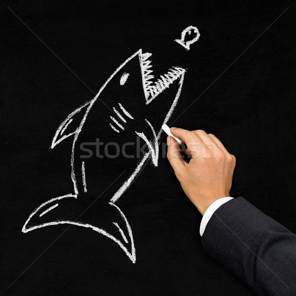 Requin chasse peu poissons acquisition affaires Photo stock © ShawnHempel