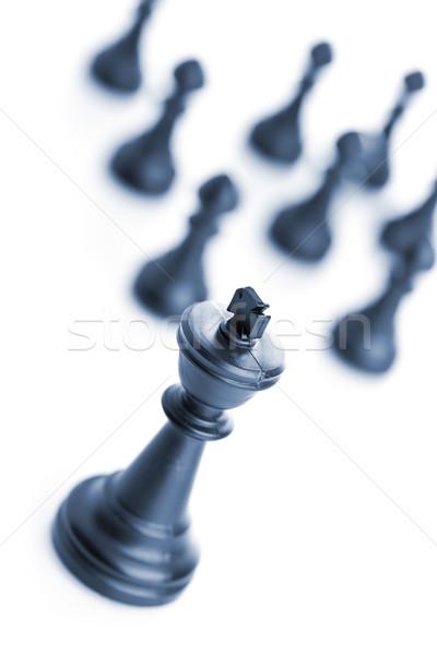 リーダーシップ 王 チェス 図 チーム 白 ストックフォト © ShawnHempel