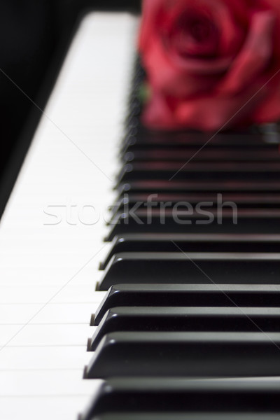 Love for music Stock photo © ShawnHempel