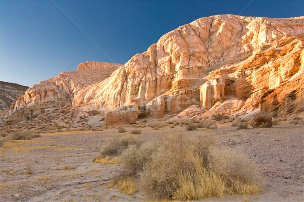 Mojave Stock photo © ShawnHempel