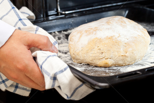 Home-made loaf of bread Stock photo © ShawnHempel