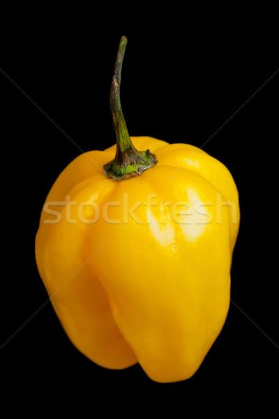 Habanero chili Stock photo © ShawnHempel