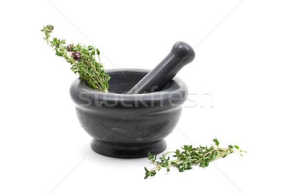 świeże organiczny tle zielone narzędzie oddziału Zdjęcia stock © ShawnHempel