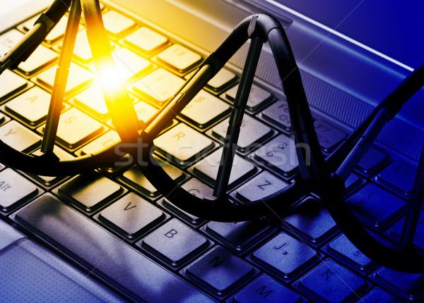 DNS modell számítógép billentyűzet mesterséges intelligencia technológia billentyűzet Stock fotó © ShawnHempel