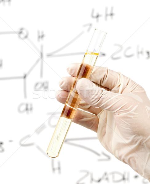Pesquisa investigador test tube milho Foto stock © ShawnHempel
