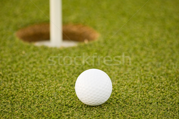 Golf Stock photo © ShawnHempel