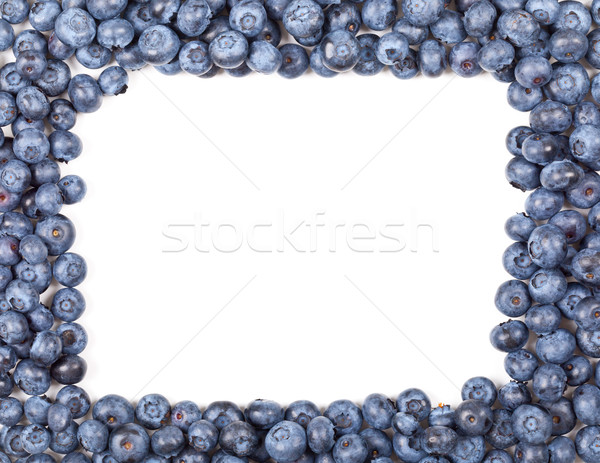 Blueberry frame Stock photo © ShawnHempel