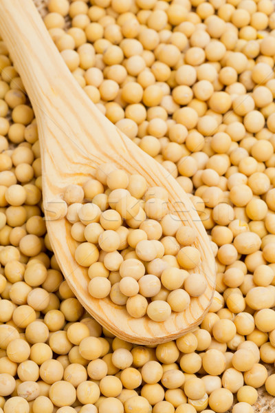 Spoon with dry soybeans Stock photo © ShawnHempel