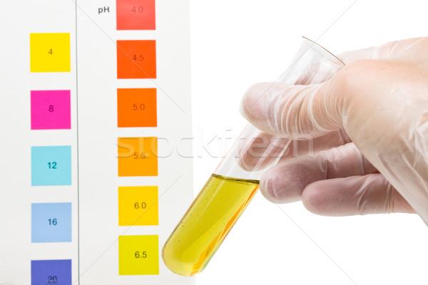 Teszt kéz tart kémcső index szín Stock fotó © ShawnHempel
