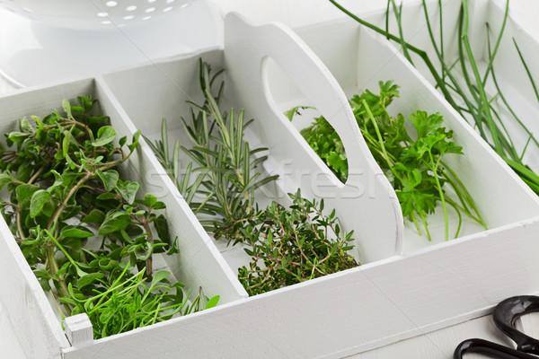 Freshly harvested kitchen herbs from the garden Stock photo © ShawnHempel