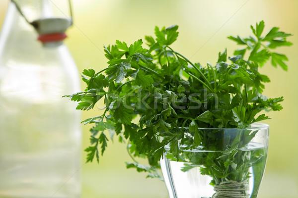 Pietruszka świeże organiczny ogród tle okno Zdjęcia stock © ShawnHempel