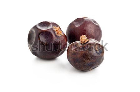 Three dried juniper berries Stock photo © ShawnHempel