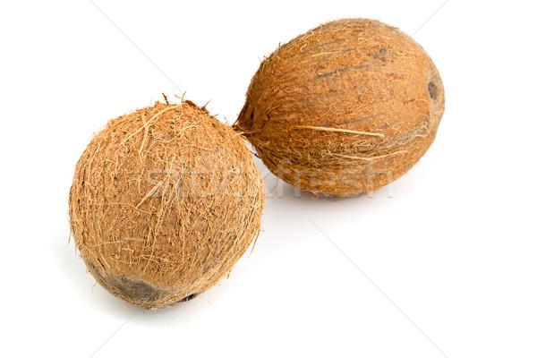 全体 ココナッツ 2 白 自然 フルーツ ストックフォト © ShawnHempel