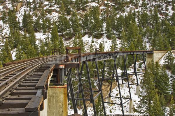 Demiryolu köprü eski ahşap madencilik forrest Stok fotoğraf © ShawnHempel