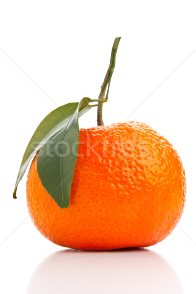 Tangerine Stock photo © ShawnHempel