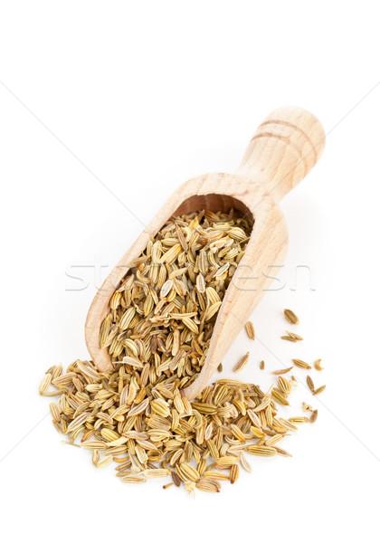 Fennel seeds on wooden scoop Stock photo © ShawnHempel