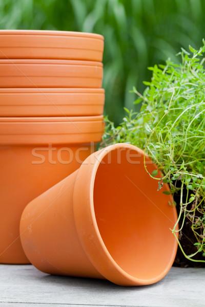 Plant pots Stock photo © ShawnHempel