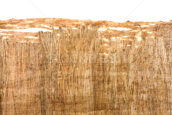 Papyrus texture Stock photo © ShawnHempel
