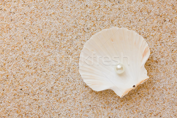 Foto stock: Perla · mar · Shell · blanco · arena