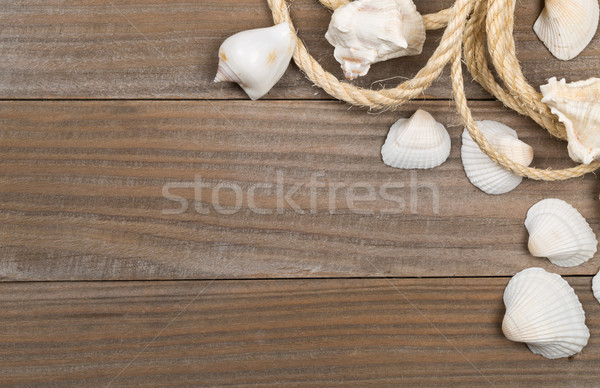 Seashells with rope on brown wooden boards  Stock photo © ShawnHempel