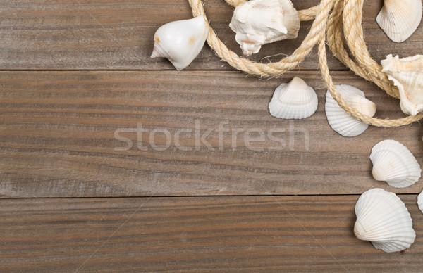 ракушки веревку коричневый копия пространства отпуск Сток-фото © ShawnHempel
