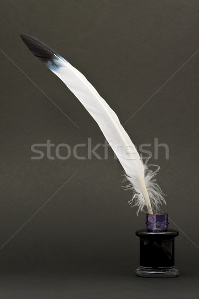 Quill and inkwell Stock photo © ShawnHempel