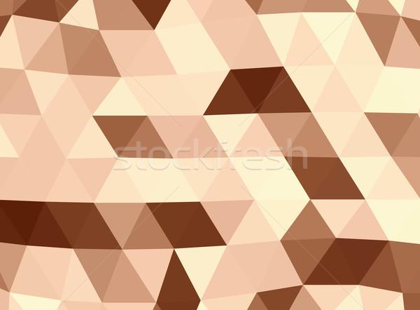 Geometric brown lowpoly background Stock photo © ShawnHempel