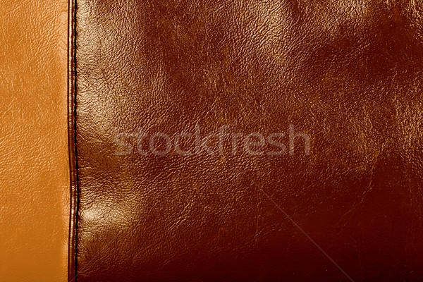 Leather Stock photo © ShawnHempel