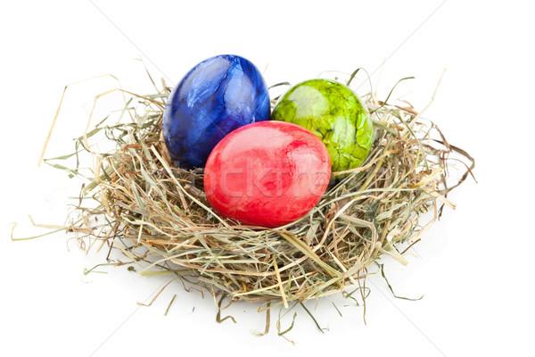 Easter eggs fieno nido rosso verde blu Foto d'archivio © ShawnHempel