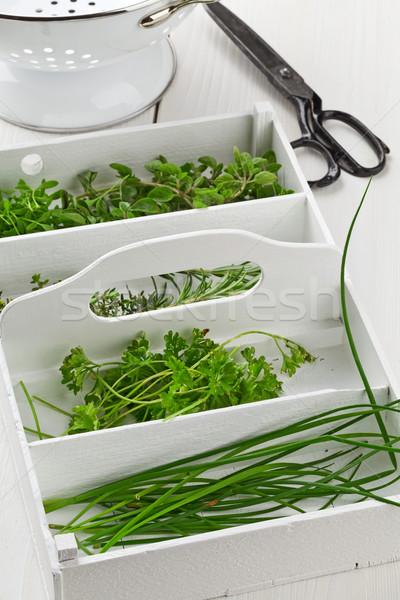 Stock fotó: Frissen · konyha · gyógynövények · kert · friss · vág