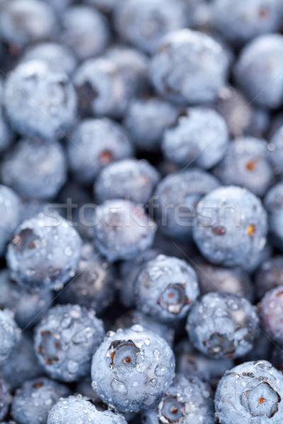 Blueberries macro Stock photo © ShawnHempel