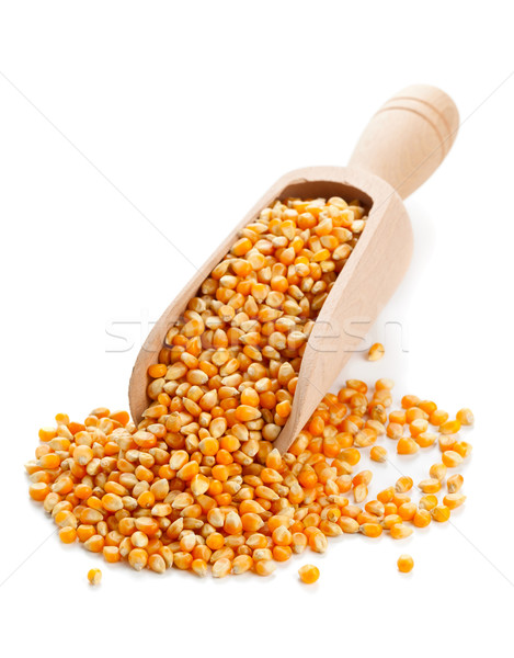 Corn kernels Stock photo © ShawnHempel